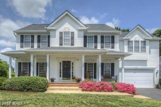 10719 Tricia Place, Fredericksburg, VA 22408 (#SP9871255) :: Pearson Smith Realty