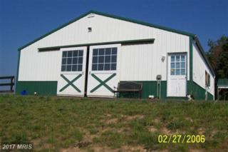 6010 Woodberry Farm Road, Orange, VA 22960 (#SP9871334) :: LoCoMusings