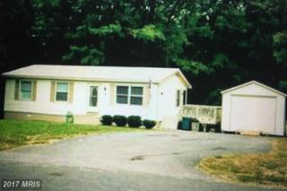 6201 John Wayne Drive, Fredericksburg, VA 22407 (#SP9871576) :: LoCoMusings