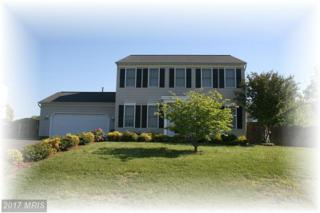 6100 Three Cedars Lane, Fredericksburg, VA 22407 (#SP9872110) :: LoCoMusings