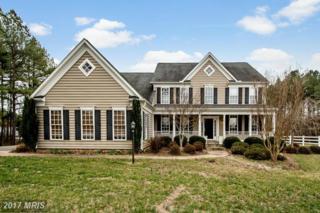 9047 Pine Acres Way, Spotsylvania, VA 22551 (#SP9873902) :: LoCoMusings