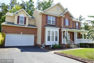6904 Hawthorne Woods Circle, Fredericksburg, VA 22407 (#SP9874014) :: LoCoMusings