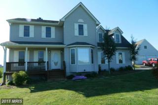 15705 Quay Court, Mineral, VA 23117 (#SP9875090) :: LoCoMusings