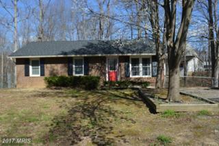 117 Bowen Drive, Fredericksburg, VA 22407 (#SP9876610) :: LoCoMusings