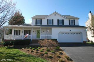 11912 Woodland View Drive, Fredericksburg, VA 22407 (#SP9879118) :: LoCoMusings