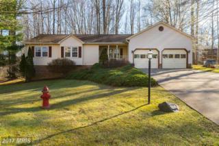 11011 Cedar Post Lane, Spotsylvania, VA 22553 (#SP9880603) :: LoCoMusings
