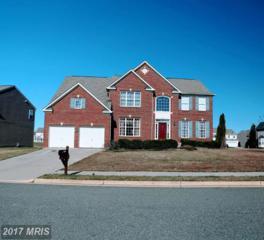 5501 Silver Maple Lane, Fredericksburg, VA 22407 (#SP9881098) :: LoCoMusings