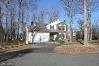 5516 Rainwood Drive, Fredericksburg, VA 22407 (#SP9885993) :: LoCoMusings