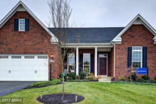 129 Hermitage Drive, Fredericksburg, VA 22407 (#SP9886380) :: Pearson Smith Realty