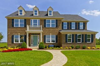 131 Hermitage Drive, Fredericksburg, VA 22407 (#SP9887929) :: Pearson Smith Realty