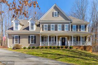 11923 Sawhill Boulevard, Spotsylvania, VA 22553 (#SP9890138) :: Pearson Smith Realty