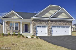 5928 Mills Manor Court S, Fredericksburg, VA 22407 (#SP9890637) :: LoCoMusings