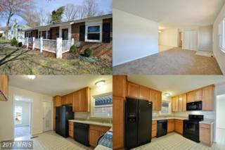 119 Winewood Drive, Locust Grove, VA 22508 (#SP9892038) :: Pearson Smith Realty