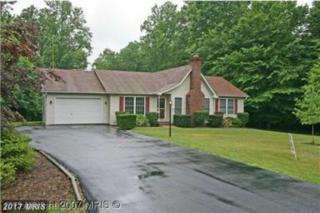 5806 Dogwood Tree Lane, Mineral, VA 23117 (#SP9892761) :: Pearson Smith Realty