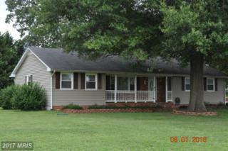 6017 Three Cedars Lane, Fredericksburg, VA 22407 (#SP9892885) :: LoCoMusings