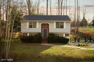 10704 Heatherwood Drive, Spotsylvania, VA 22553 (#SP9893074) :: LoCoMusings