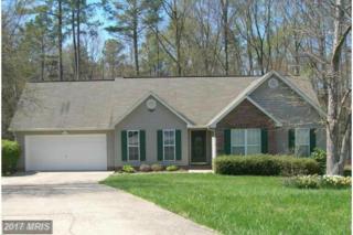 7902 Red Ash Court, Fredericksburg, VA 22407 (#SP9893494) :: Pearson Smith Realty
