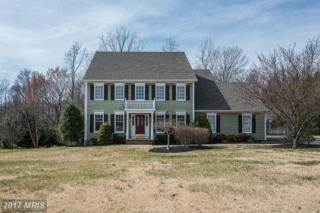 8407 Broadmore Lane, Spotsylvania, VA 22553 (#SP9895695) :: LoCoMusings