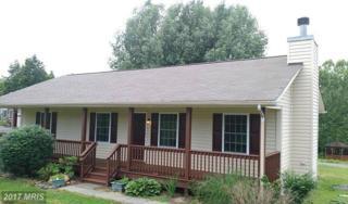 6206 Bryn Lane, Mineral, VA 23117 (#SP9896494) :: Pearson Smith Realty