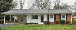 814 Salem Drive, Fredericksburg, VA 22407 (#SP9896669) :: Pearson Smith Realty
