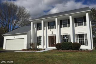 11211 Beauclaire Boulevard, Fredericksburg, VA 22408 (#SP9903948) :: Pearson Smith Realty