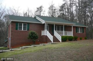 5406 Trimmingham Court, Mineral, VA 23117 (#SP9905887) :: Pearson Smith Realty