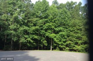 15307 Walnut Tree Court, Mineral, VA 23117 (#SP9906139) :: Pearson Smith Realty