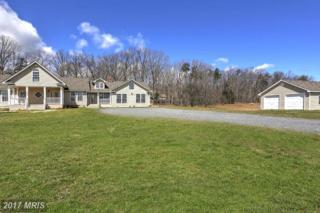 8730 Whites Lane, Spotsylvania, VA 22551 (#SP9907131) :: Pearson Smith Realty