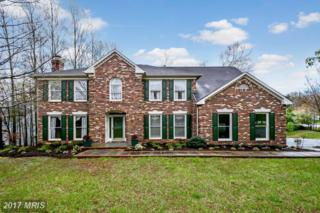 9612 Charlesfield Drive, Fredericksburg, VA 22407 (#SP9910552) :: Pearson Smith Realty