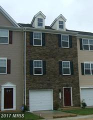 2217 Mallard Landing Drive, Fredericksburg, VA 22408 (#SP9911926) :: Pearson Smith Realty
