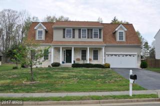 9806 Crimson Oaks Way, Fredericksburg, VA 22408 (#SP9915811) :: Pearson Smith Realty