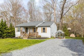 14813 Rapidan Road, Fredericksburg, VA 22407 (#SP9915885) :: Pearson Smith Realty