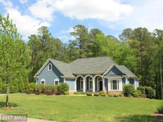 11607 Pine Hollow Lane, Spotsylvania, VA 22551 (#SP9917737) :: LoCoMusings