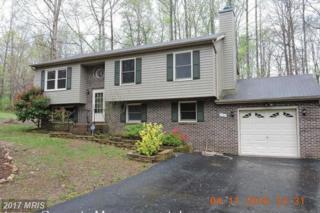 12502 Henkins Lane, Spotsylvania, VA 22551 (#SP9917948) :: Pearson Smith Realty