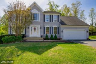 5906 Cranston Lane N, Fredericksburg, VA 22407 (#SP9918861) :: Pearson Smith Realty