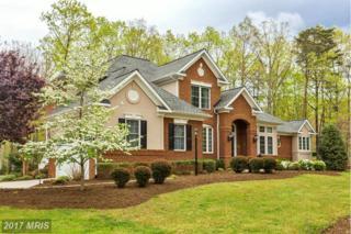 11201 Westmont Drive, Spotsylvania, VA 22551 (#SP9918947) :: LoCoMusings
