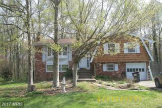 210 Creek Lane, Fredericksburg, VA 22407 (#SP9919412) :: Pearson Smith Realty