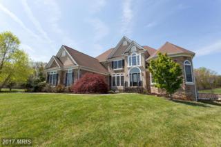 6604 Belle Rive Drive W, Fredericksburg, VA 22407 (#SP9919957) :: Pearson Smith Realty
