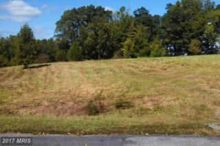 17109 Arrow Point Drive, Orange, VA 22960 (#SP9920166) :: LoCoMusings