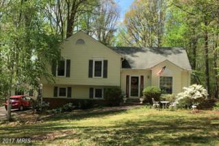 12413 Wilderness Park Drive, Spotsylvania, VA 22551 (#SP9920537) :: Pearson Smith Realty