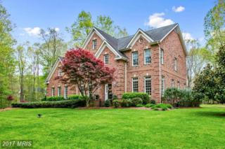 13608 Kalmbacks Mill Drive, Fredericksburg, VA 22407 (#SP9927733) :: Pearson Smith Realty