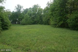 17224 Arrow Point Drive, Orange, VA 22960 (#SP9930445) :: Pearson Smith Realty