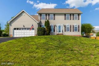 12017 Teeside Drive, Fredericksburg, VA 22407 (#SP9931055) :: Pearson Smith Realty