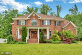 11202 Lynette Court, Fredericksburg, VA 22408 (#SP9933644) :: Pearson Smith Realty