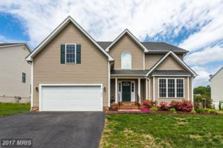 10707 Tricia Place, Fredericksburg, VA 22408 (#SP9934268) :: Pearson Smith Realty