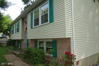 11721 Kennedy Lane, Fredericksburg, VA 22407 (#SP9936562) :: Pearson Smith Realty