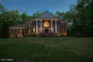 13610 Kalmbacks Mill Drive, Fredericksburg, VA 22407 (#SP9937661) :: Pearson Smith Realty