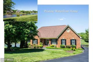 8412 Hildy Court, Spotsylvania, VA 22553 (#SP9937828) :: Pearson Smith Realty
