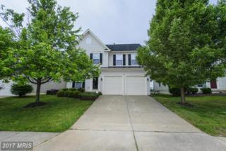 5216 Windbreak Drive, Fredericksburg, VA 22407 (#SP9939261) :: Pearson Smith Realty