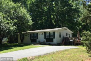 10608 Elk Drive, Fredericksburg, VA 22407 (#SP9939320) :: Pearson Smith Realty